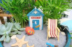 One of Shirley Taylor's miniature seaside gardens with bamboo and succulents.