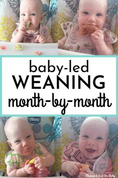 These are the best foods for baby-led weaning! Find out what to serve baby starting at 6 months all the way through 1 year! This is a month-by-month guide for the best first foods for baby using the baby-led weaning method. Baby Led Weaning First Foods, Baby First Foods, Baby Weaning, Weaning Toddler, Solids For Baby, Homemade Baby Foods, Baby Development, Baby Health, Newborn Care