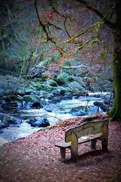 Fall colors in Dunkeld ~ Perthshire, Scotland