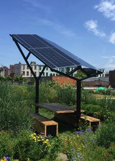 Solar Outpost is a nice place to work on a green roof in Brooklyn : TreeHugger