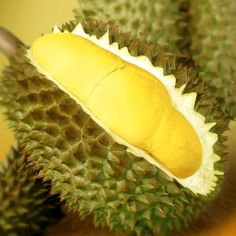 Durian - the king of Tropical fruits found it's way in the Philippines through our neighboring countries. Known for its large size and unique aroma. Some people regard the durian as fragrant; others find the aroma overpowering and offensive.