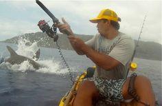 Huge shark gives kayak angler a major surprise!