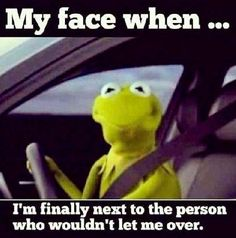 Funny angry Kermit the frog driver