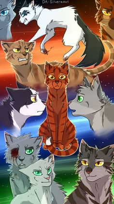 Warrior Cats Shattered Sky by Silverzoul