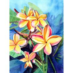 Plumeria Watercolor, Tropical Flowers, Frangipani Art, Kauai Fine Art,... ($119) ❤ liked on Polyvore featuring home, home decor, wall art, unframed wall art, flower stem, blossom wall art, flower painting and blossom painting