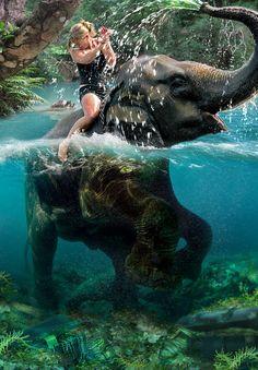 Ride an elephant!!   Cameon Andersens Photos : Photo Keywords : water : Elephant Ride
