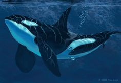 Going back to basics. (I used to paint and draw nothing but whales and dolphins six years ago.) An Orca glides by a cliff face, where it plunges into the ocean creating a vast wall of stone. Art ©2...