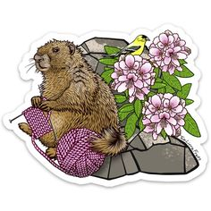 Knitting Marmot Large Die Cut Sticker Water Bottles, Die Cutting, Laptops, Sunlight, Choices, Rain, Windows, Stickers, Knitting