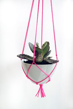 easy photo tutorial for an affordable DIY plant hanger. I'm thinking herbs or baby cactus. Would be really cute for any home, office, classroom, etc.