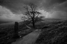'Bronte Moors  This was taken on the Yorkshire moors on the track that leads to Top Withens.  Top Withens was the house that inspired Emily Bronte whilst writing Wuthering Heights.  On days such as this one can easily imagine the dark brooding Heathcliffe walking the moors in search of Catherine.  The Bronte sisters would have walked this path many times in their ventures onto the moors around the home village of Haworth.'  (Wandering Soul on Deviant Art)