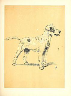 vintage dog printable