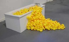 A bubble bath of rubber ducks! Art at Great Brampton House, Miller's Hideaway, Herefordshire