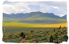 Landscape in the wider Tankwa Karoo - Tankwa Karoo National Park, National Parks in South Africa.