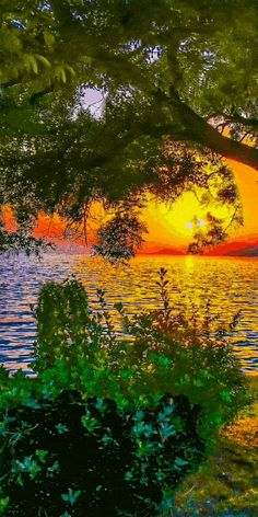 Beautiful Photos Of Nature, Beautiful Gif, Beautiful Sunset, Amazing Nature, Beautiful Landscapes, Beautiful Pictures, Wallpaper Nature Flowers, Sunset Wallpaper, Beautiful Nature Wallpaper