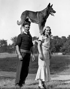United Kingdom - July 15th: Couple with dog standing on their shoulders, ca. 1910's. Photo by Science & Society Picture Library / SSPL / Getty Images. °