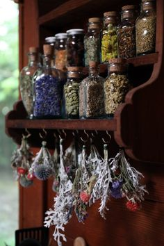 Herbal Medicine Herbal apothecary shelf with glass cork top bottles filled with dried herbs with hanging dried plants below - Find out how herbalist Kiva Rose stocks and organizes the herbal remedies in her home apothecary. Dry Plants, Herbal Plants, Herbal Tea, Herbal Shop, Plants Indoor, Indoor Garden, Build Your Own House, Witch Aesthetic, Aesthetic Dark