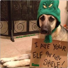 I ate your elf on the shelf! YES!!  LOL ;)