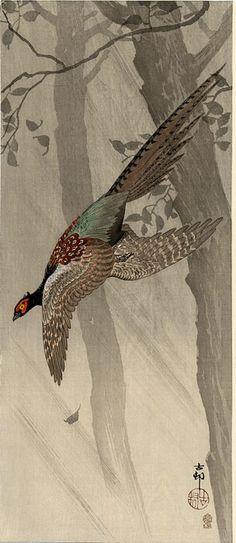 Ohara Koson (1877-1945): Green Pheasant in Flight