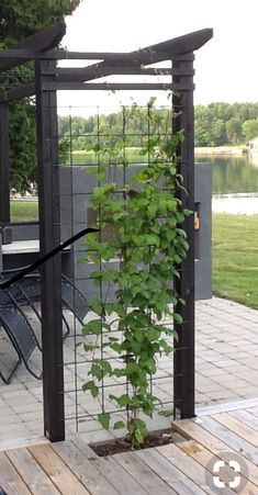 Garden Plans Gardening Designs Ideas, our best designs 1377603562 to try. Find inspiration now! Garden Plans Gardening Designs Ideas, our best designs 1377603562 to try. Find inspiration now! While ancient in idea, a pergola.
