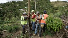 Electricity restored to 75 percent of customers in Puerto Rico: Utility