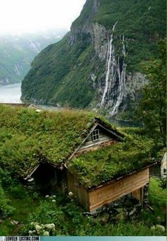 Farmhouse high over Geiranger Fjord