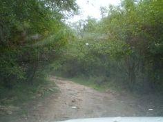 Holgat Pass