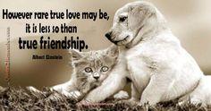 However rare true love… – Quotes 2 Remember