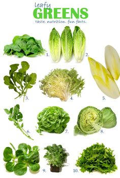 The Ultimate Guide to Your Greens