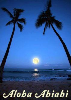 """""""aloha ahiahi"""" means """"good evening."""""""
