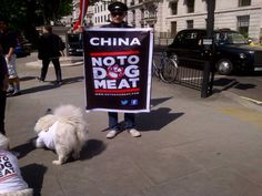 #NoToDogMeat It's so easy to campaign.Make a banner and go spread the word #CrueltyIsNotCool www.notodogmeat.com
