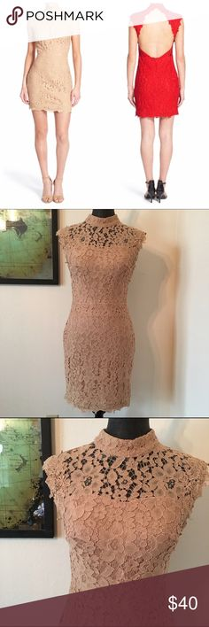 """NWOT Backless Bodycon Lace Sheath Dress d e s c r i p t i o n  Romantic lace comprises a curve-hugging sheath cut with an alluring open back balanced by a demure high collar. Perfect for all those seasonal parties coming up! NWOT. NO TRADES.  c o n t e n t  100% nylon  m e a s u r e m e n t s ✂️  size + m 