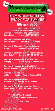 GYM WORKOUT PLAN READY FOR SUMMER WOMEN 2nd month day 3 Pull day » UltimateWorkoutPlans.com