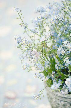 prettie-sweet:  (via Les étoiles grises)