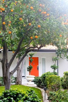 Where to stay in Palm Springs | coral door  |  color inspiration