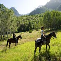 Ride a mountain horse along the scenic mountain terrain by Sundance.