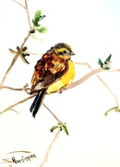Yellowhammer Original watercolor painting 12 X 9 by ORIGINALONLY