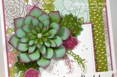 Stampin Up Oh So Succulent card by Kristi @ www.stampingwithkristi.com