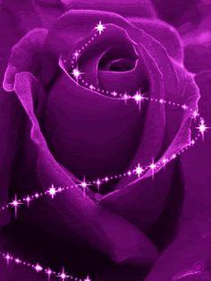 Purple Love, All Things Purple, Shades Of Purple, Deep Purple, Purple Stuff, Purple Sparkle, Magenta, Malva, Pretty Flowers