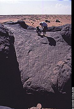 The engraved images of two giraffes, estimated to be some yrs old, have been found atop a sandstone outcrop in the Sahara Desert of northeastern Niger. One is more than 20 feet high. Ancient Mysteries, Ancient Artifacts, Ancient Aliens, Ancient History, Cave Drawings, Fresco, Tempera, Ancient Civilizations, Gravure
