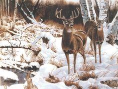 Watershed Refuge - Jerry Gadamus - Thunder Mountain Press