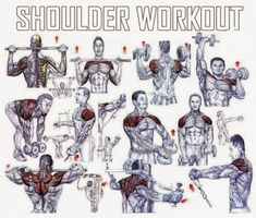 Shoulders Workout Plan - Healthy Fitness Training Routine Back - Yeah We… Chest Workouts, Easy Workouts, Chest Exercises, Shoulder Mass Workout, Shoulder Exercises, Sport Studio, Chest Muscles, Shoulder Muscles, Bodybuilding Workouts