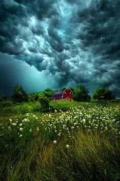 Riding the Storm by Phil Koch .have always been amazed by the occasional bright blossoms under some of the darkest storm clouds. Beautiful Sky, Beautiful Landscapes, Beautiful World, Beautiful Places, Amazing Places, All Nature, Amazing Nature, Landscape Photography, Nature Photography