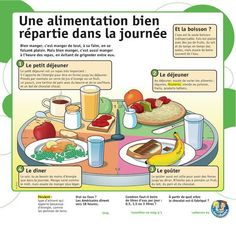 Une alimentation bien répartie dans la journée pour une bonne santé.