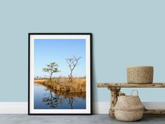 Two trees are reflected in still waters of a coastal marsh on a silent, peaceful morning. This art print of a tranquil coastal landscape , is the perfect wall art to decorate your home. The simplicity of the composition looks great with many styles of home decor, a minimalist zen loft or a rustic