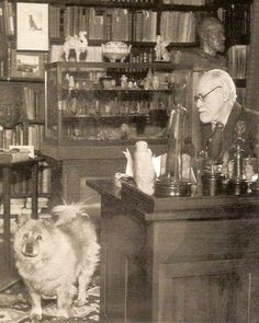 This must have been a really smart pup being around Sigmund Freud