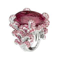 Celebrities who use a Dior Joaillerie Incroyable Ring. Also discover the movies, TV shows, and events associated with Dior Joaillerie Incroyable Ring. Dior Jewelry, Ruby Jewelry, Gems Jewelry, Jewelry Box, Vintage Jewelry, Jewelry Accessories, Fashion Jewelry, Jewelry Design, Unique Jewelry