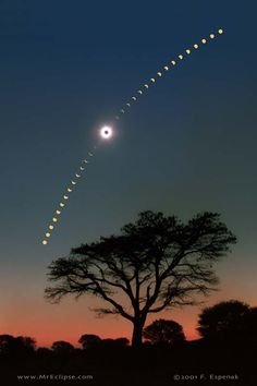 """""""Eclipse Sequence Over Africa"""" by Fred Espenak (TWAN)"""