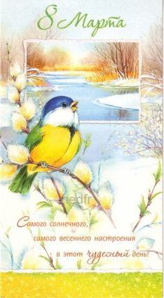 8 Mars, Christmas Bird, Old Cards, Happy Woman Day, Picture Postcards, Winter Flowers, 8th Of March, Watercolor Bird, Russian Art