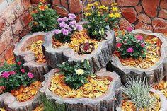 Öltöztesd virágba a farönköt, a kert ékessége lehet | Sokszínű vidék