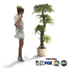 Delicieux Large Luxury Artificial Japanese Fruticosa Tree Stylish Contemporary  Handmade Using Real Bark Replica Fake Indoor Plant